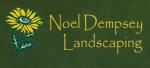 www.noeldempseylandscaping.com